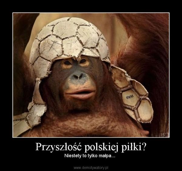 Przyszłość polskiej piłki? – Niestety to tylko małpa...