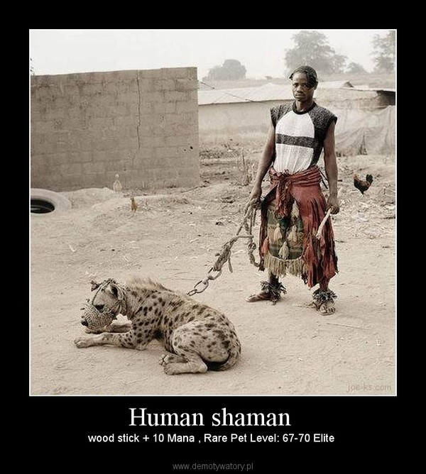 Human shaman  – wood stick + 10 Mana , Rare Pet Level: 67-70 Elite