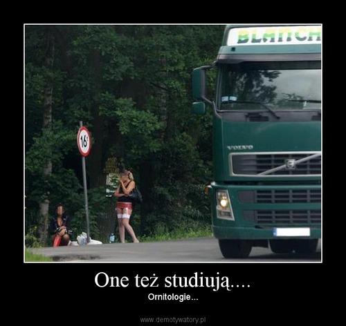 One też studiują....