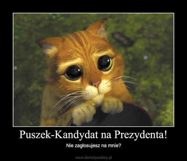 Puszek-Kandydat na Prezydenta! – Nie zagłosujesz na mnie?