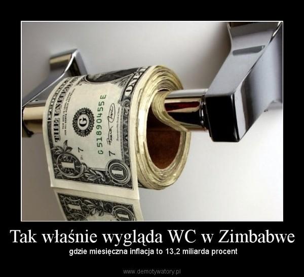 Tak właśnie wygląda WC w Zimbabwe –  gdzie miesięczna inflacja to 13,2 miliarda procent