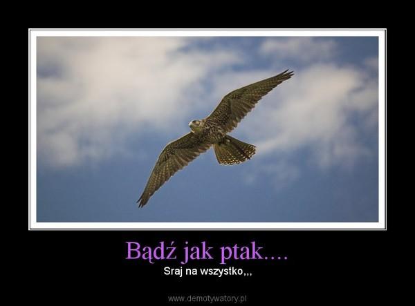 Bądź jak ptak.... –  Sraj na wszystko,,,
