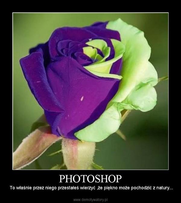PHOTOSHOP –  To właśnie przez niego przestałeś wierzyć ,że piękno może pochodzić z natury...