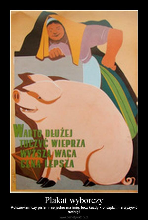 Plakat wyborczy – Polszewizm czy pislam nie jedno ma imię, lecz każdy kto rządzi, ma wyżywićświnię!