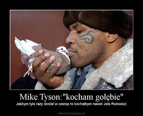 """Mike Tyson:""""kocham gołębie"""""""