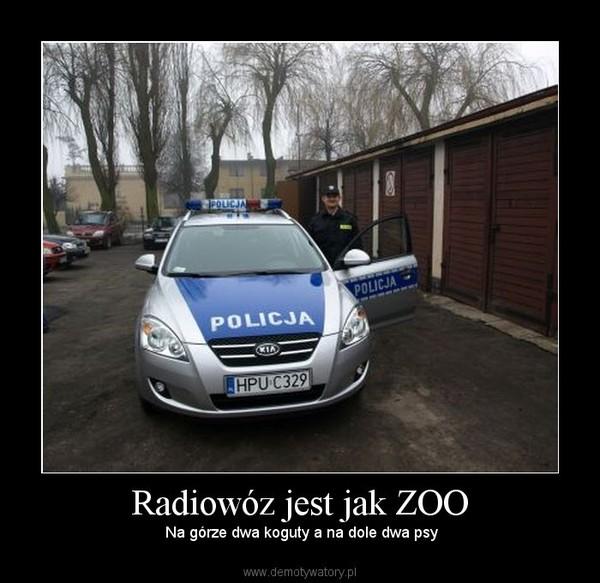 Radiowóz jest jak ZOO – Na górze dwa koguty a na dole dwa psy