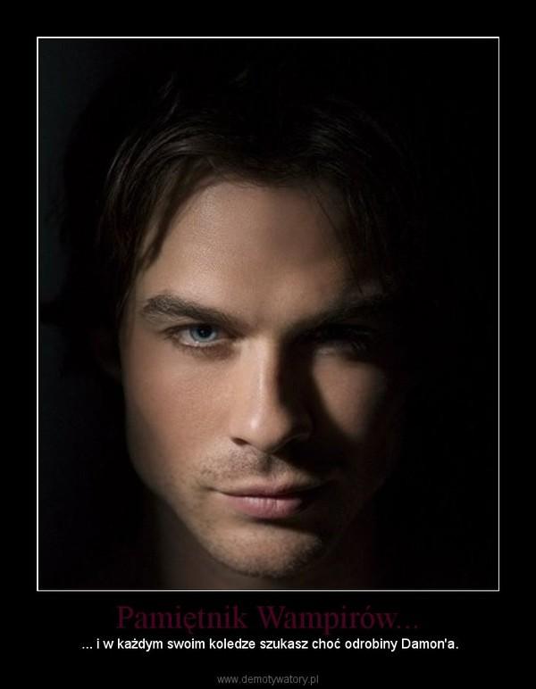 Pamiętnik Wampirów... – ... i w każdym swoim koledze szukasz choć odrobiny Damon'a.