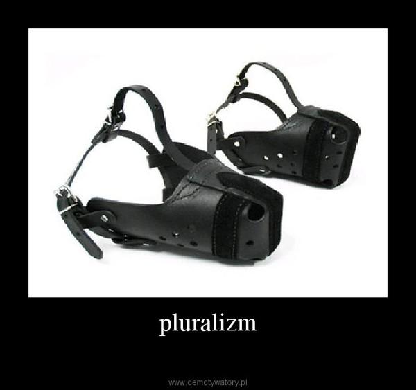 pluralizm –