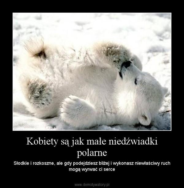 Kobiety są jak małe niedźwiadki polarne – Słodkie i rozkoszne, ale gdy podejdziesz bliżej i wykonasz niewłaściwy ruch mogą wyrwać ci serce