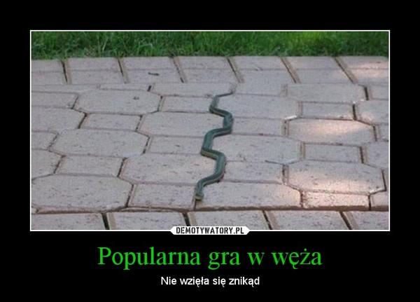 Popularna gra w węża – Nie wzięła się znikąd