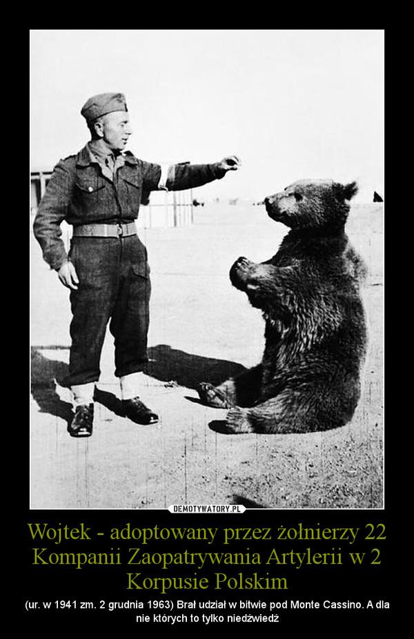 Wojtek - adoptowany przez żołnierzy 22 Kompanii Zaopatrywania Artylerii w 2 Korpusie Polskim – (ur. w 1941 zm. 2 grudnia 1963) Brał udział w bitwie pod Monte Cassino. A dla nie których to tylko niedźwiedź