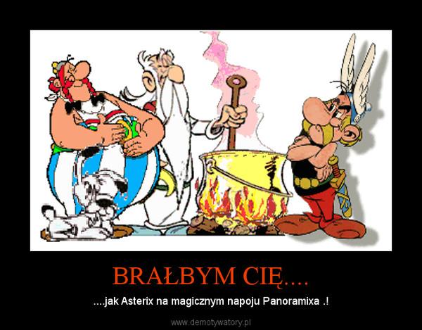 BRAŁBYM CIĘ.... – ....jak Asterix na magicznym napoju Panoramixa .!