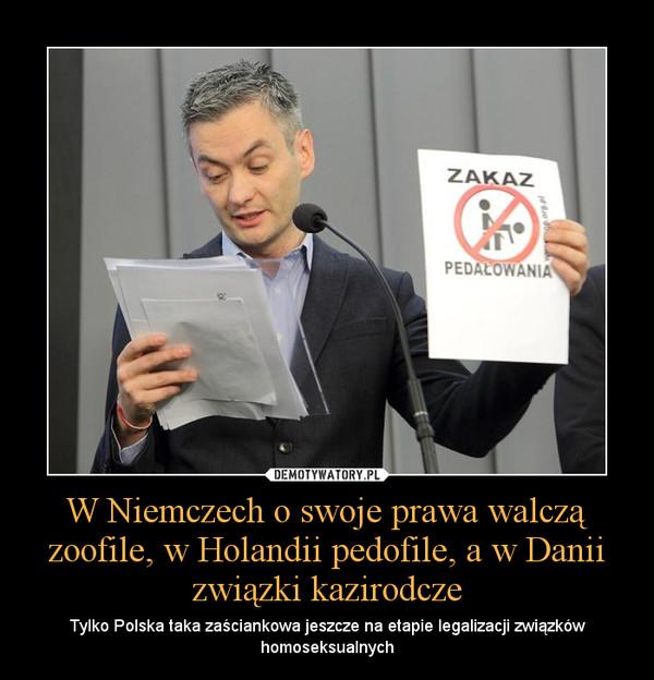 W Niemczech o swoje prawa walczą zoofile, w Holandii pedofile, a w Danii związki kazirodcze – Tylko Polska taka zaściankowa jeszcze na etapie legalizacji związków homoseksualnych