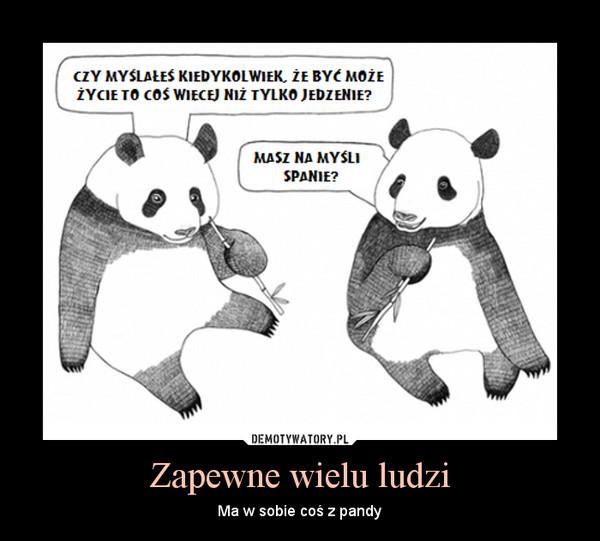 Zapewne wielu ludzi – Ma w sobie coś z pandy