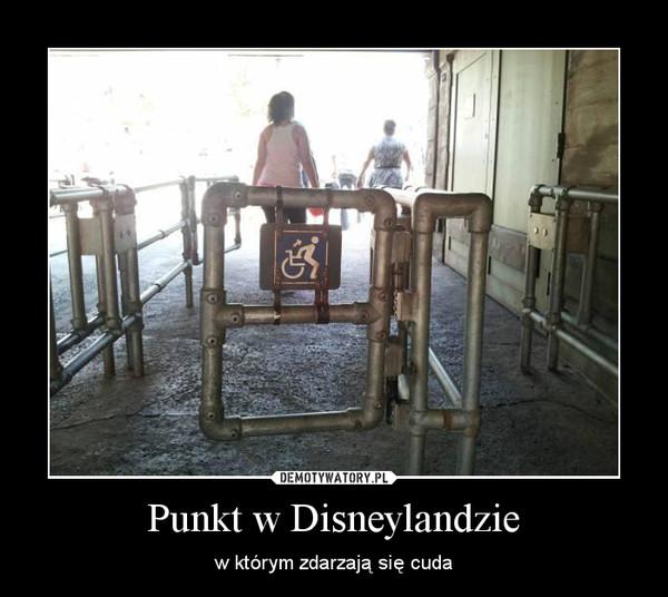 Punkt w Disneylandzie – w którym zdarzają się cuda