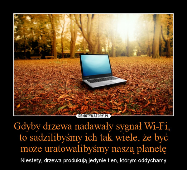 Gdyby drzewa nadawały sygnał Wi-Fi, to sadzilibyśmy ich tak wiele, że być może uratowalibyśmy naszą planetę – Niestety, drzewa produkują jedynie tlen, którym oddychamy