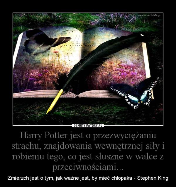 Harry Potter jest o przezwyciężaniu strachu, znajdowania wewnętrznej siły i robieniu tego, co jest słuszne w walce z przeciwnościami... – Zmierzch jest o tym, jak ważne jest, by mieć chłopaka - Stephen King