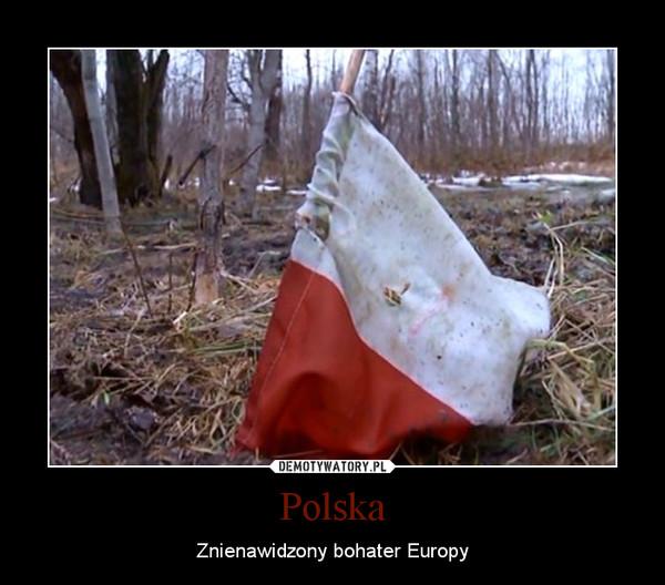 Polska – Znienawidzony bohater Europy