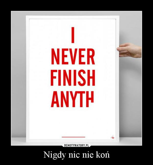 Nigdy nic nie koń –