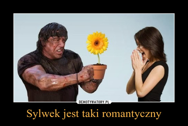 Sylwek jest taki romantyczny –