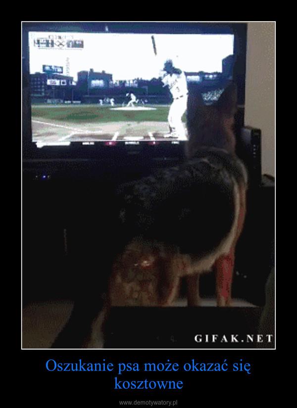 Oszukanie psa może okazać się kosztowne –