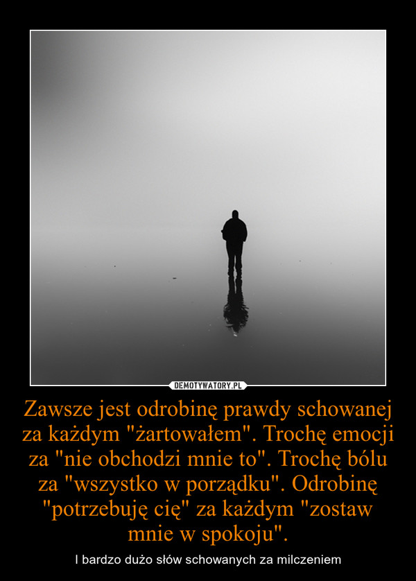 """Zawsze jest odrobinę prawdy schowanej za każdym """"żartowałem"""". Trochę emocji za """"nie obchodzi mnie to"""". Trochę bólu za """"wszystko w porządku"""". Odrobinę """"potrzebuję cię"""" za każdym """"zostaw mnie w spokoju"""". – I bardzo dużo słów schowanych za milczeniem"""
