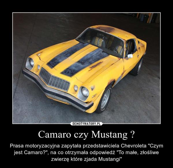 """Camaro czy Mustang ? – Prasa motoryzacyjna zapytała przedstawiciela Chevroleta """"Czym jest Camaro?"""", na co otrzymała odpowiedź """"To małe, złośliwe zwierzę które zjada Mustangi"""""""