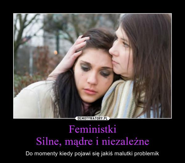 FeministkiSilne, mądre i niezależne – Do momenty kiedy pojawi się jakiś malutki problemik