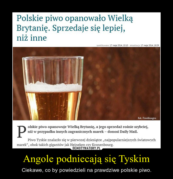 Angole podniecają się Tyskim – Ciekawe, co by powiedzieli na prawdziwe polskie piwo.
