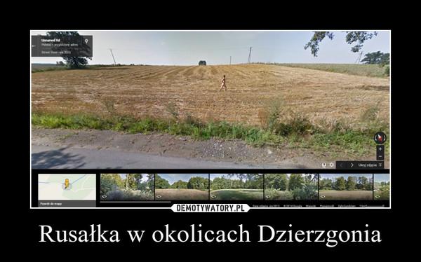 Rusałka w okolicach Dzierzgonia –