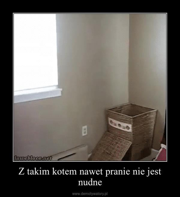 Z takim kotem nawet pranie nie jest nudne –