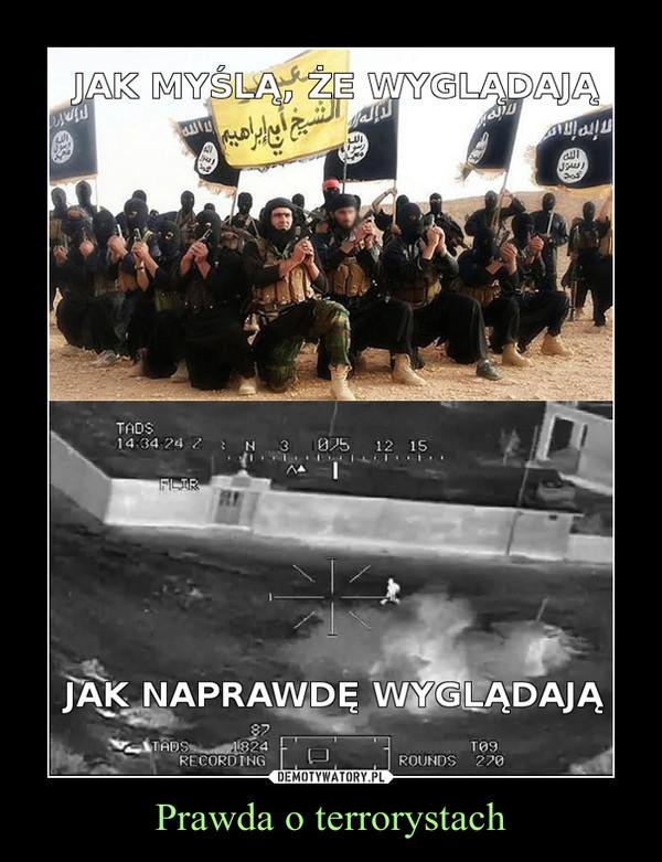Prawda o terrorystach –