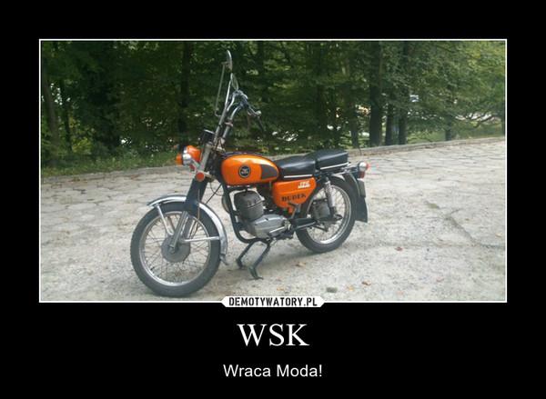 WSK – Wraca Moda!