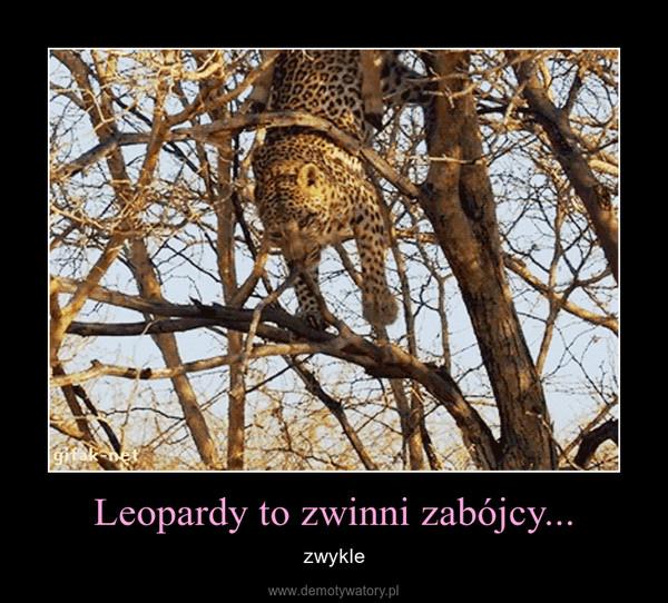 Leopardy to zwinni zabójcy... – zwykle