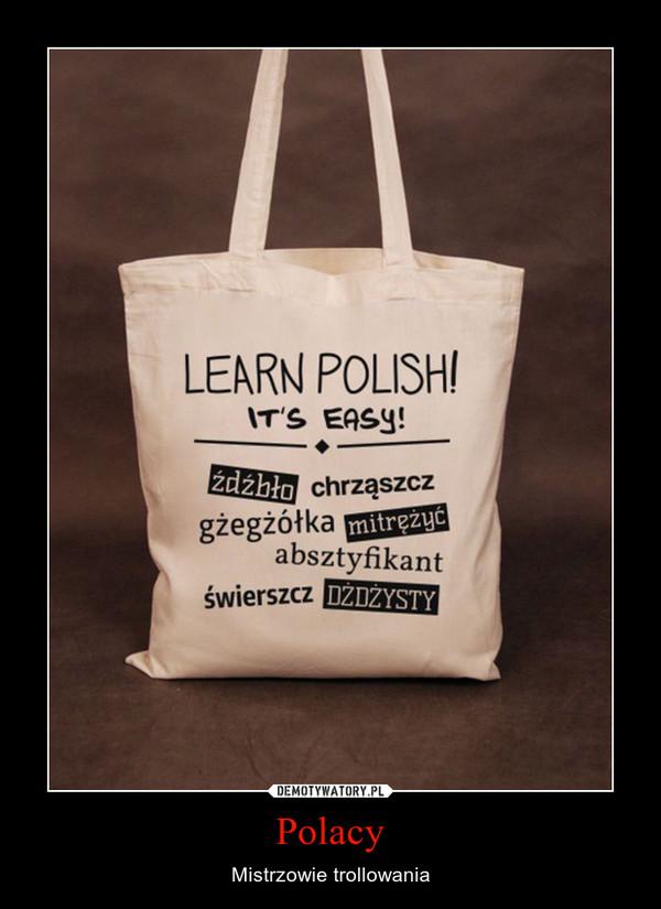 Polacy – Mistrzowie trollowania