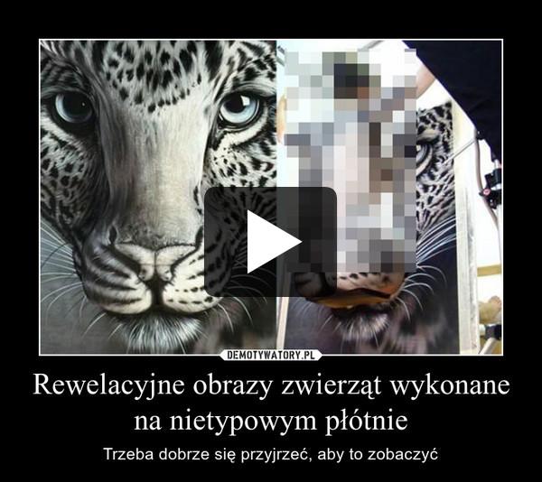 Rewelacyjne obrazy zwierząt wykonane na nietypowym płótnie – Trzeba dobrze się przyjrzeć, aby to zobaczyć