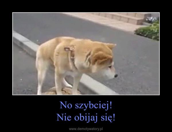 No szybciej!Nie obijaj się! –
