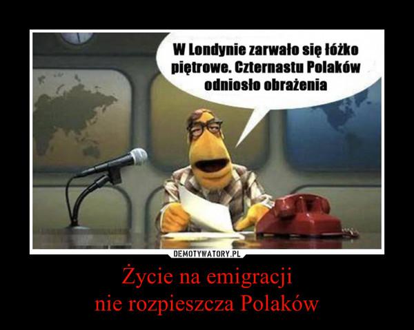 Życie na emigracjinie rozpieszcza Polaków –