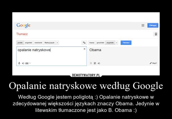 Opalanie natryskowe według Google – Według Google jestem poliglotą :) Opalanie natryskowe w zdecydowanej większości językach znaczy Obama. Jedynie w litewskim tłumaczone jest jako B. Obama :)