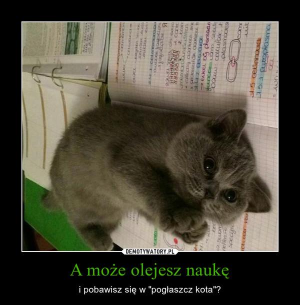 """A może olejesz naukę – i pobawisz się w """"pogłaszcz kota""""?"""