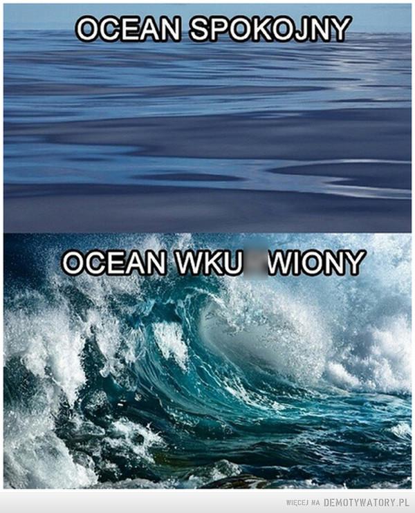Oceanu stany gdy jest obserwowany –