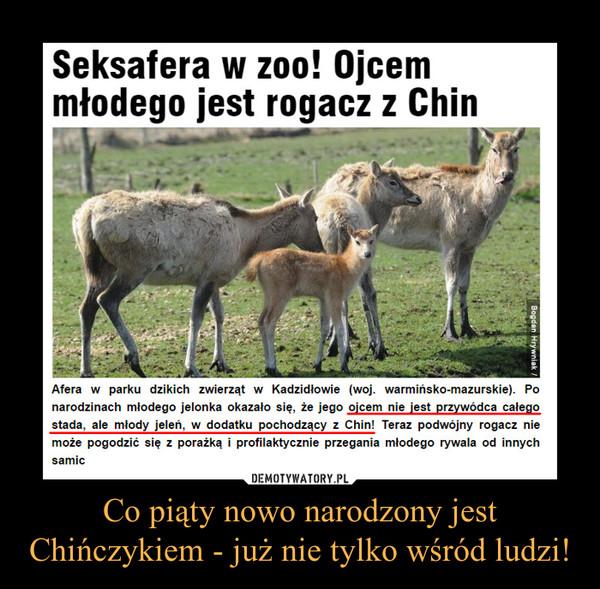 Co piąty nowo narodzony jest Chińczykiem - już nie tylko wśród ludzi! –