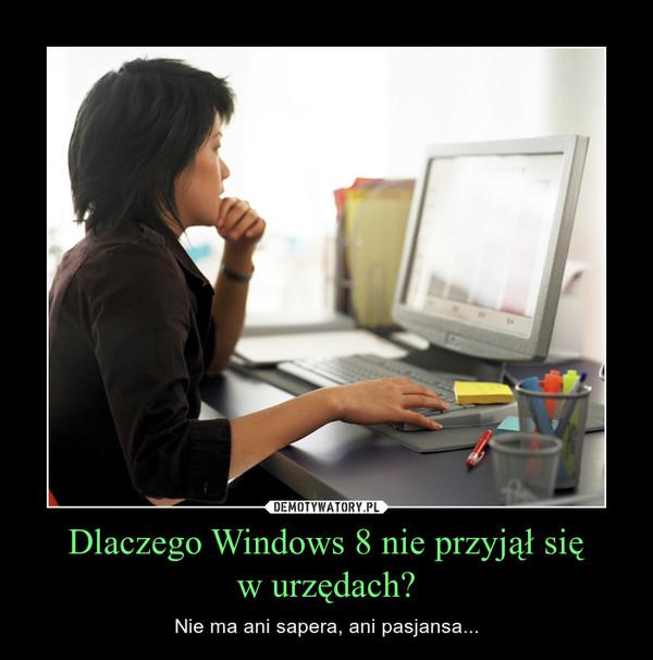 Dlaczego Windows 8 nie przyjął sięw urzędach? – Nie ma ani sapera, ani pasjansa...