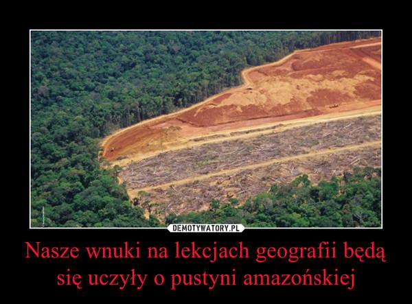 Nasze wnuki na lekcjach geografii będą się uczyły o pustyni amazońskiej –