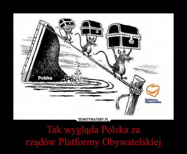 Tak wygląda Polska zarządów Platformy Obywatelskiej –