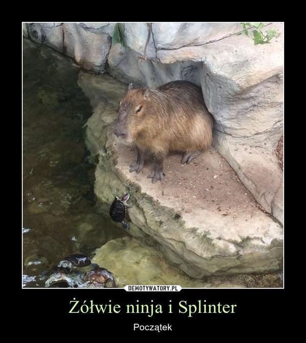 Żółwie ninja i Splinter – Początek