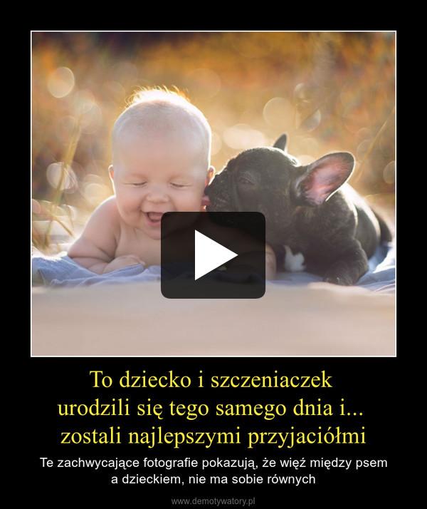 To dziecko i szczeniaczek urodzili się tego samego dnia i... zostali najlepszymi przyjaciółmi – Te zachwycające fotografie pokazują, że więź między psema dzieckiem, nie ma sobie równych