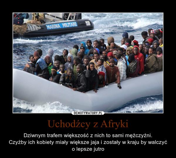 Uchodźcy z Afryki – Dziwnym trafem większość z nich to sami mężczyźni. Czyżby ich kobiety miały większe jaja i zostały w kraju by walczyć o lepsze jutro