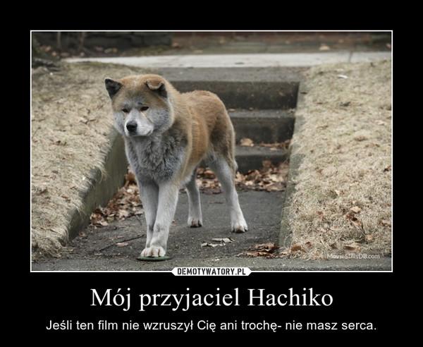 Mój przyjaciel Hachiko – Jeśli ten film nie wzruszył Cię ani trochę- nie masz serca.