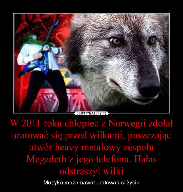 W 2011 roku chłopiec z Norwegii zdołał uratować się przed wilkami, puszczając utwór heavy metalowy zespołu Megadeth z jego telefonu. Hałas odstraszył wilki – Muzyka może nawet uratować ci życie